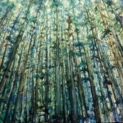 The Trees | Landscape Paintings | Kim Pollard | Canadian Artist | British Columbia | West Coast | Rainforest